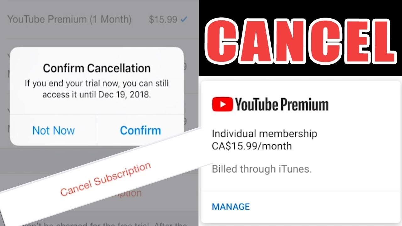How to cancel youtube music trial